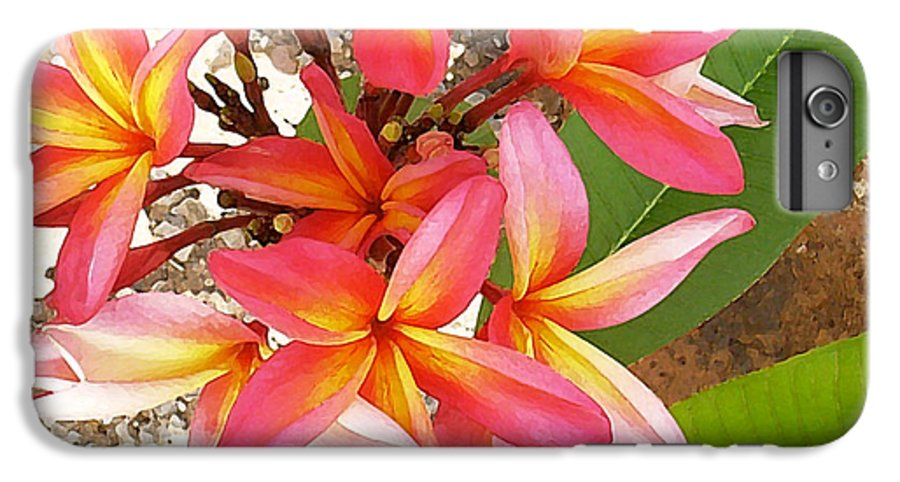 Hawaii Iphone Cases IPhone 6 Plus Case featuring the photograph Plantation Plumeria by James Temple