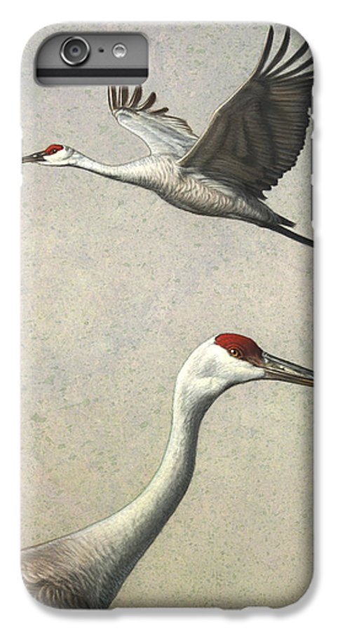 Crane IPhone 6 Plus Case featuring the painting Sandhill Cranes by James W Johnson