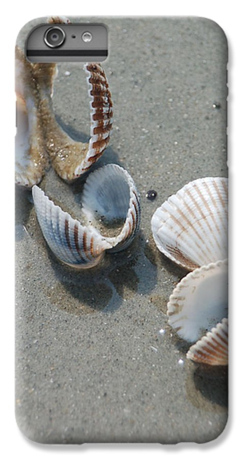 Sea Shell IPhone 6 Plus Case featuring the photograph She Sells Sea Shells by Suzanne Gaff