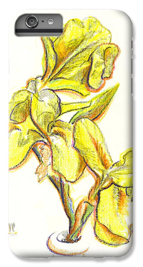 Spanish Irises IPhone 6 Plus Case featuring the painting Spanish Irises by Kip DeVore