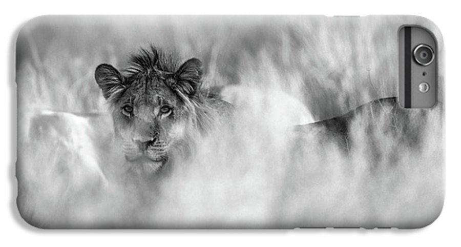 Lion IPhone 6 Plus Case featuring the photograph Subtle Mane by Jaco Marx