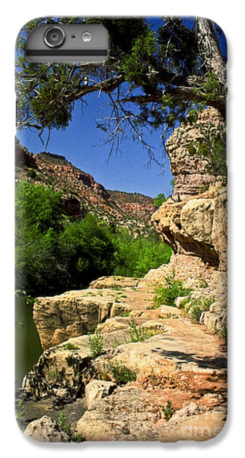 Arizona IPhone 6 Plus Case featuring the photograph Sycamore Canyon by Kathy McClure