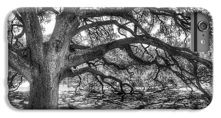 Tree IPhone 6 Plus Case featuring the photograph The Century Oak by Scott Norris