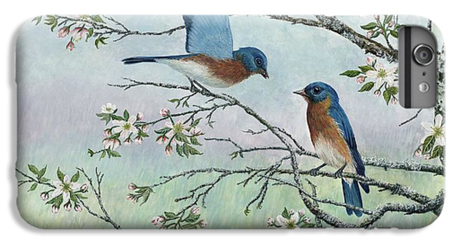Bluebirds; Trees; Wildlife IPhone 6 Plus Case featuring the painting The Gift by Ben Kiger
