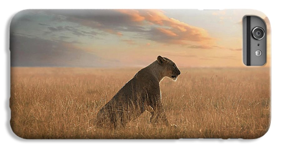 Lion IPhone 6 Plus Case featuring the photograph The Queen by Bjorn Persson
