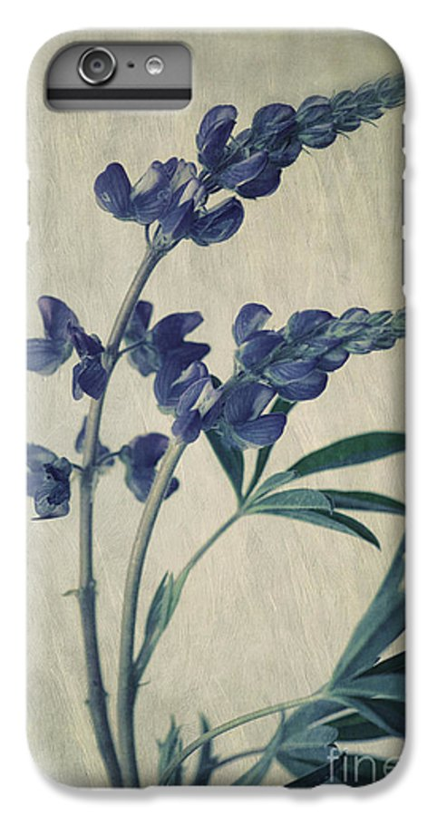 Lupine IPhone 6 Plus Case featuring the photograph Wild Lupine by Priska Wettstein
