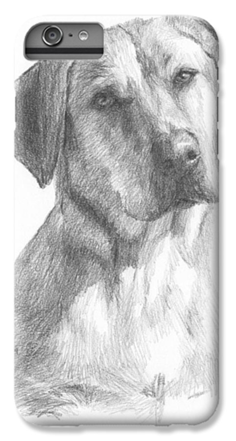 <a Href=http://miketheuer.com>www.miketheuer.com</a> Yellow Lab Dog Pencil Portrait IPhone 6 Plus Case featuring the drawing Yellow Lab Dog Pencil Portrait by Mike Theuer