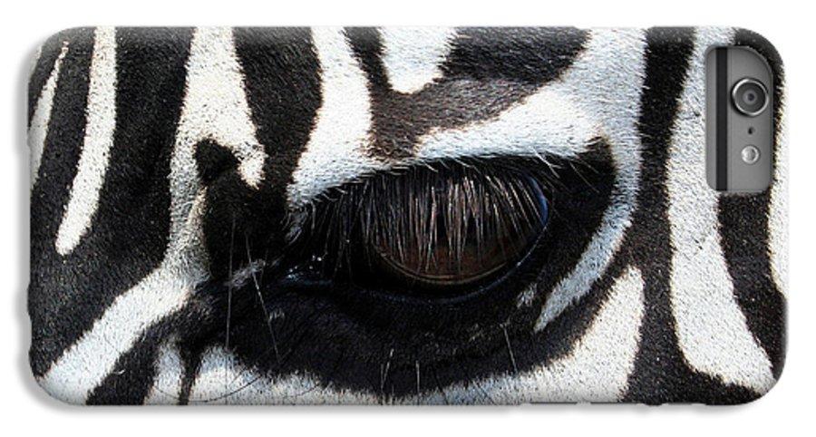 Zebra IPhone 6 Plus Case featuring the photograph Zebra Eye by Linda Sannuti
