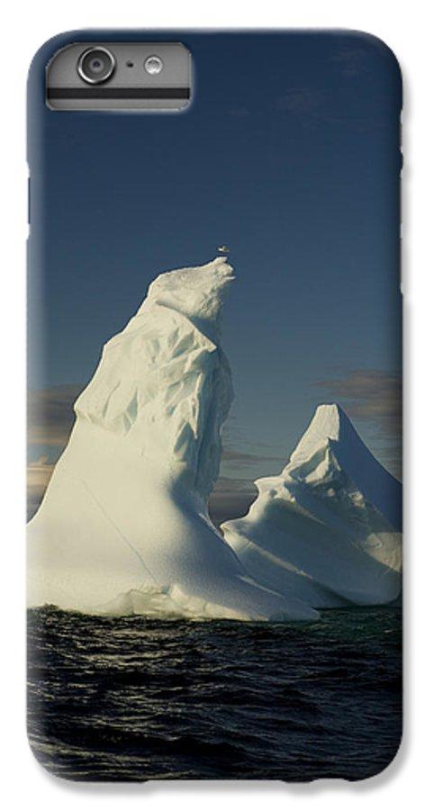 iPhone 6 PLUS cover Iceberg