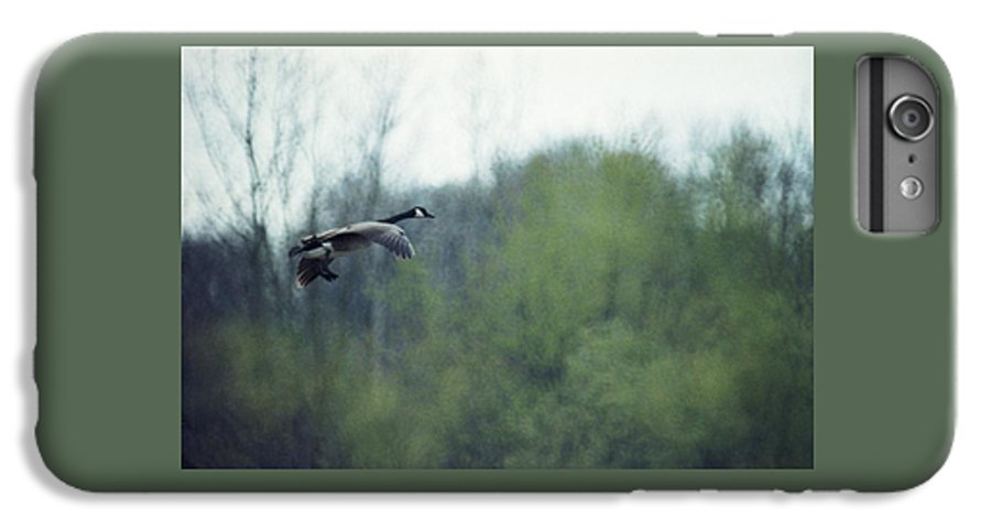 Canada Goose IPhone 6 Plus Case featuring the photograph 070406-40 by Mike Davis