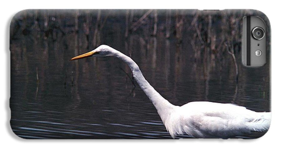 Great Egret IPhone 6 Plus Case featuring the photograph 070406-8 by Mike Davis