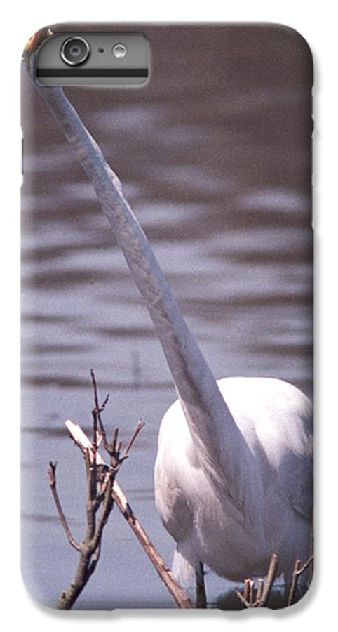 Egret IPhone 6 Plus Case featuring the photograph 070406-9 by Mike Davis