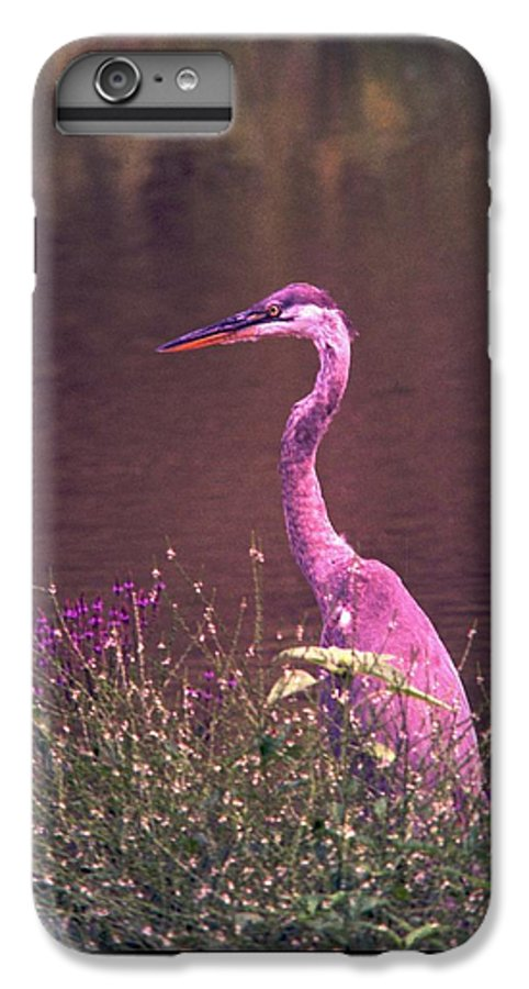 Great Blue Heron IPhone 6 Plus Case featuring the photograph 080706-12 by Mike Davis