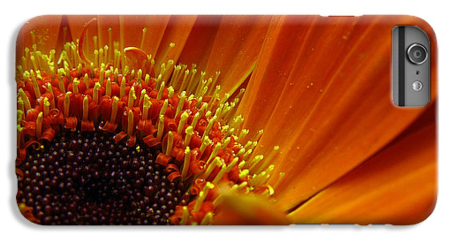 Clay IPhone 6 Plus Case featuring the photograph Floral by Clayton Bruster