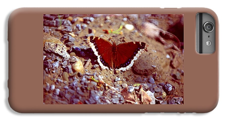 Butterfly IPhone 6 Plus Case featuring the photograph 113093-1 by Mike Davis