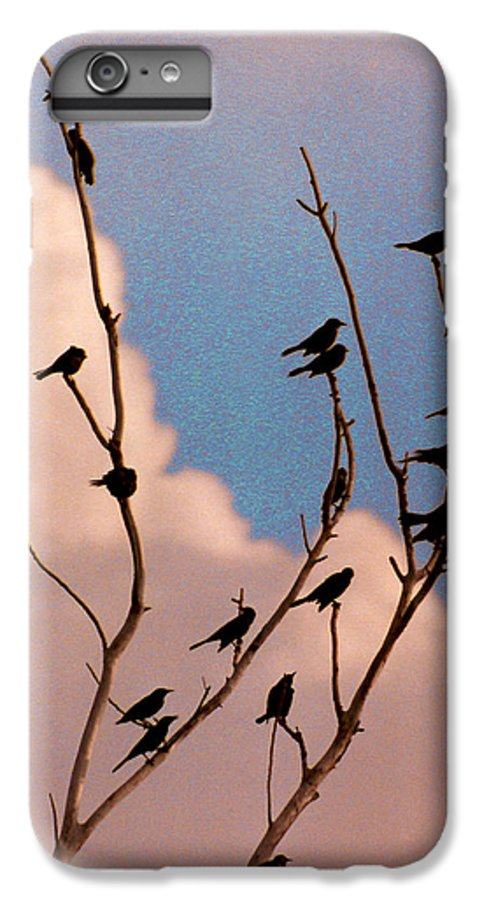 Birds IPhone 6 Plus Case featuring the photograph 19 Blackbirds by Steve Karol
