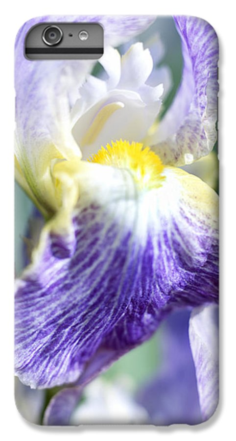 Genus Iris IPhone 6 Plus Case featuring the photograph Iris Flowers by Tony Cordoza