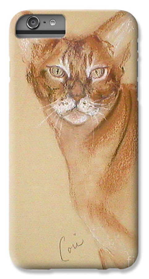 Pastel IPhone 6 Plus Case featuring the drawing Abyssinian by Cori Solomon