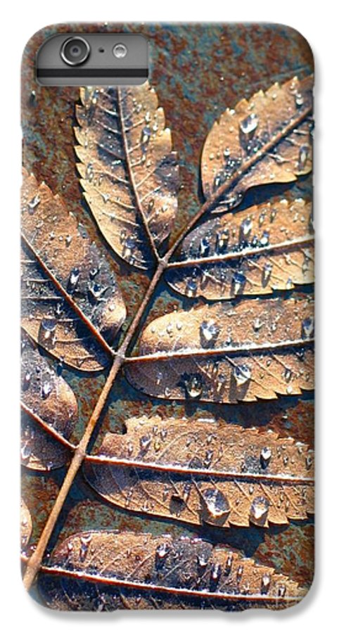 Rain IPhone 6 Plus Case featuring the photograph After The Rain by Idaho Scenic Images Linda Lantzy