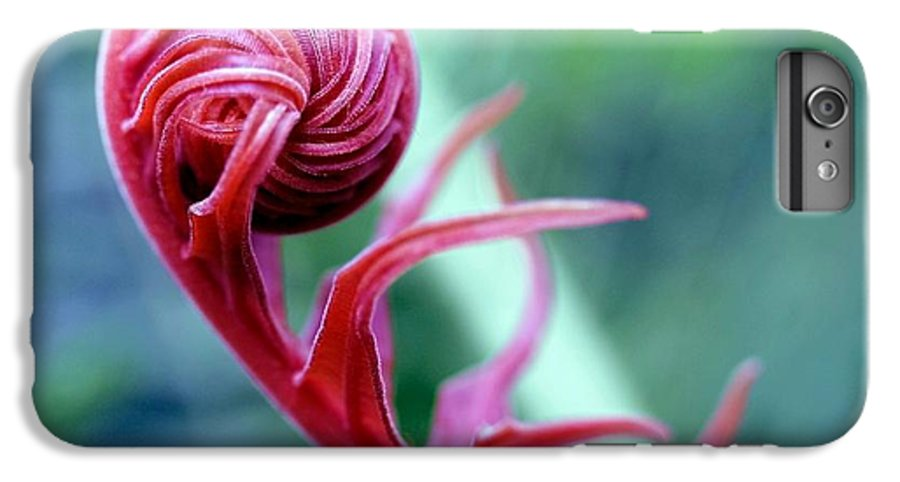 Blossom IPhone 6 Plus Case featuring the photograph Alien by Mitch Cat