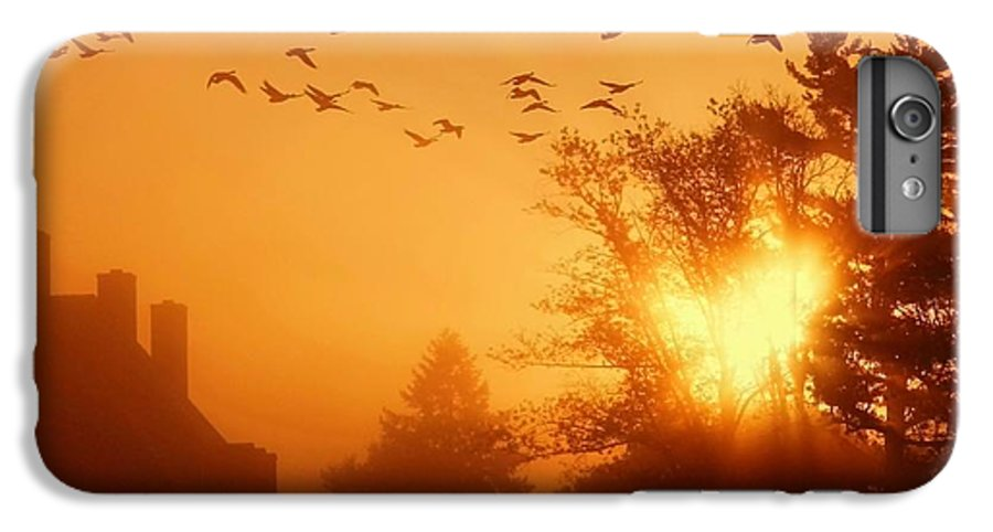 Sunrise IPhone 6 Plus Case featuring the photograph Alive by Mitch Cat