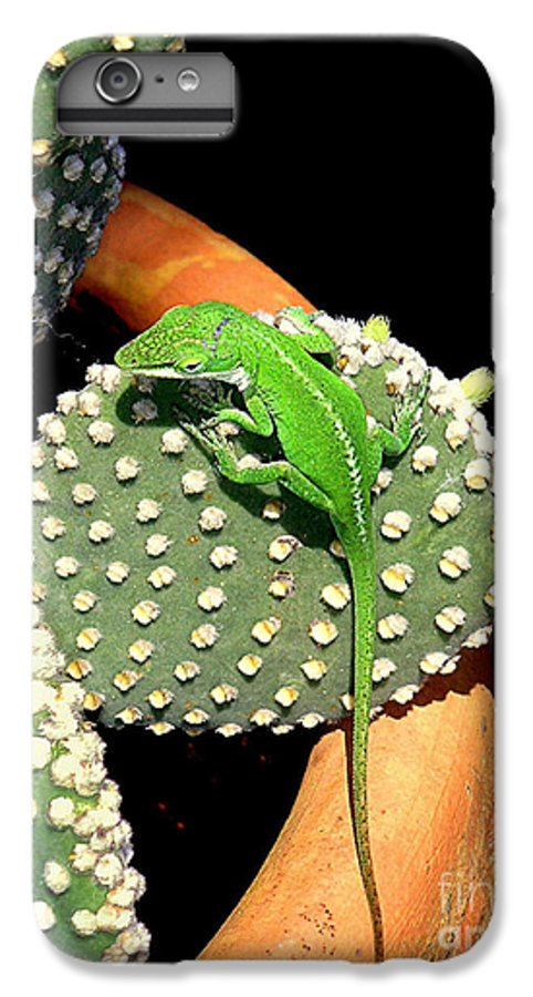 Nature IPhone 6 Plus Case featuring the photograph Anole Hanging Out With Cactus by Lucyna A M Green