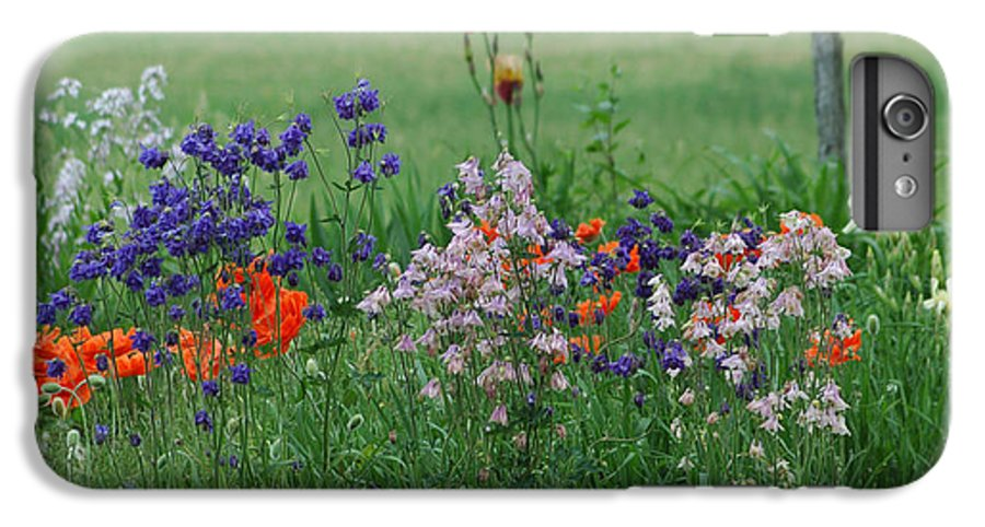 Dew IPhone 6 Plus Case featuring the photograph Tiny Miracles by Linda Murphy