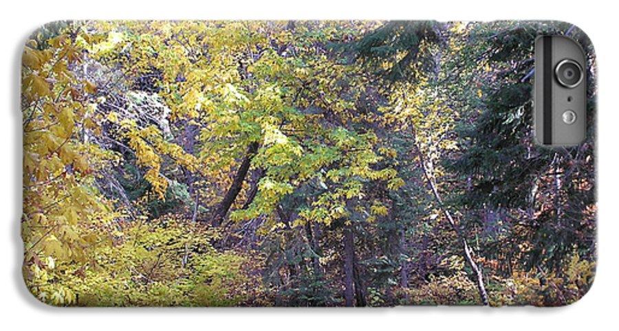 Autumn Photographs IPhone 6 Plus Case featuring the photograph Autum Colors by Louise Magno