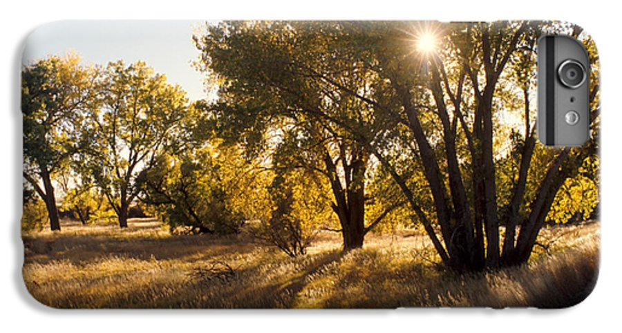 Fall IPhone 6 Plus Case featuring the photograph Autum Sunburst by Jerry McElroy