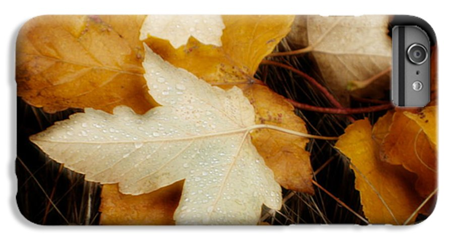 Leaf IPhone 6 Plus Case featuring the photograph Autumn Dew by Idaho Scenic Images Linda Lantzy