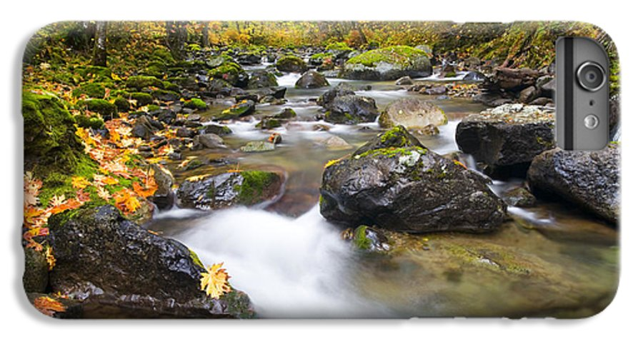Fall IPhone 6 Plus Case featuring the photograph Autumn Passing by Mike Dawson