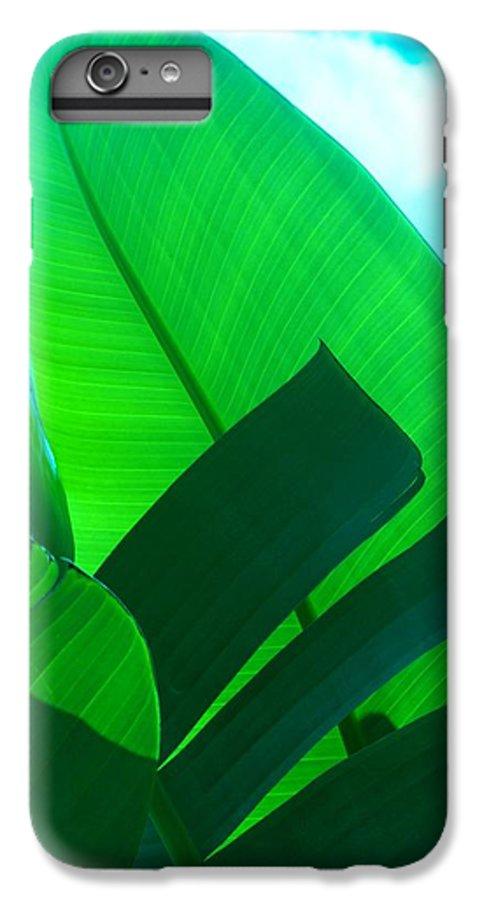 Botanical IPhone 6 Plus Case featuring the photograph Banana Aqua by Florene Welebny