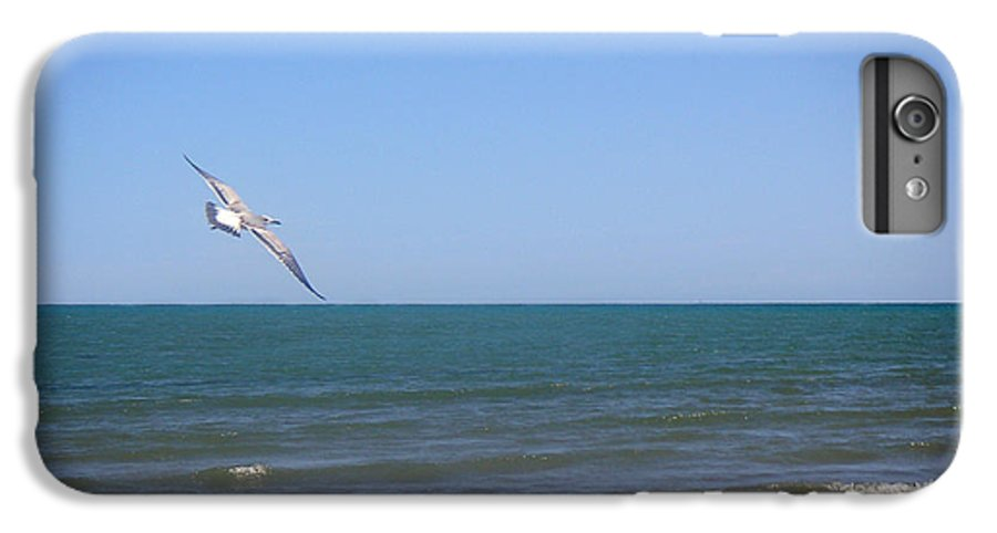 Nature IPhone 6 Plus Case featuring the photograph Being One With The Gulf - Soaring by Lucyna A M Green