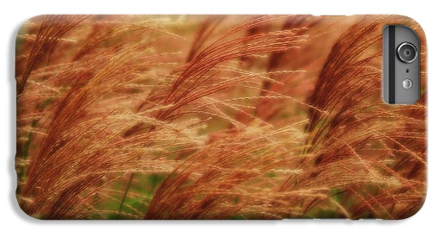 Win IPhone 6 Plus Case featuring the photograph Blowing In The Wind by Gaby Swanson