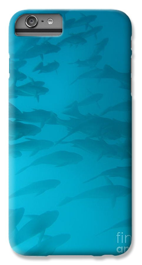 Underwater IPhone 6 Plus Case featuring the photograph Blue Flash by Chad Natti