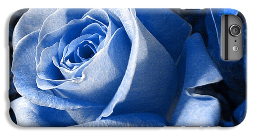 Blue IPhone 6 Plus Case featuring the photograph Blue Rose by Shelley Jones