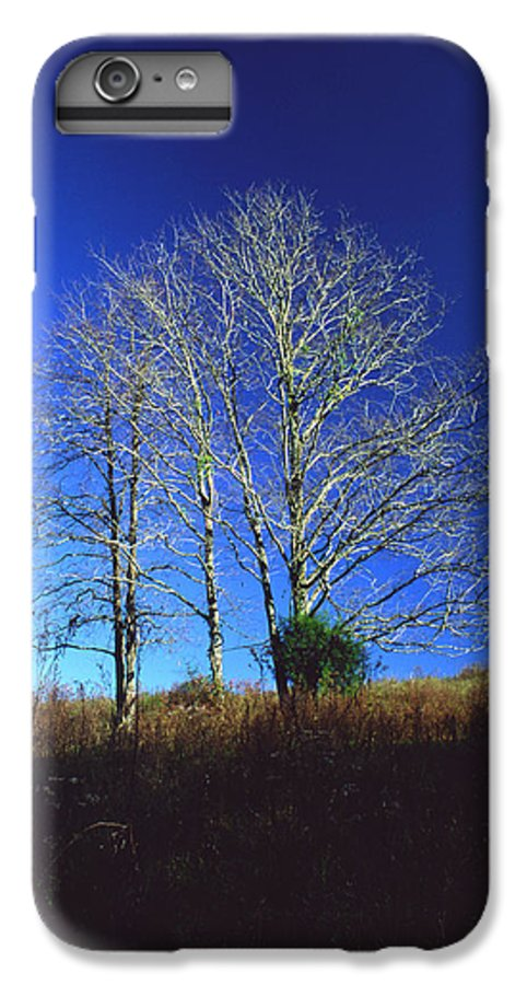 Landscape IPhone 6 Plus Case featuring the photograph Blue Tree In Tennessee by Randy Oberg