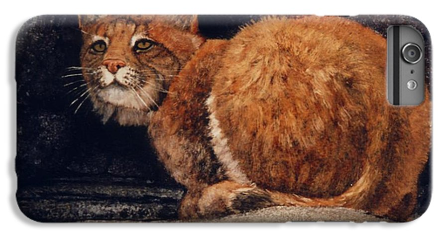 Wildlife IPhone 6 Plus Case featuring the painting Bobcat On Ledge by Frank Wilson