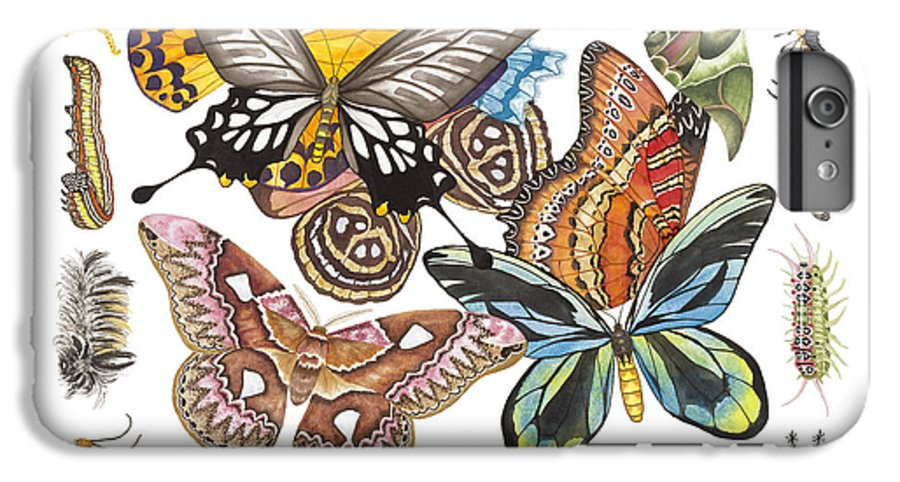 Butterflies IPhone 6 Plus Case featuring the painting Butterflies Moths Caterpillars by Lucy Arnold