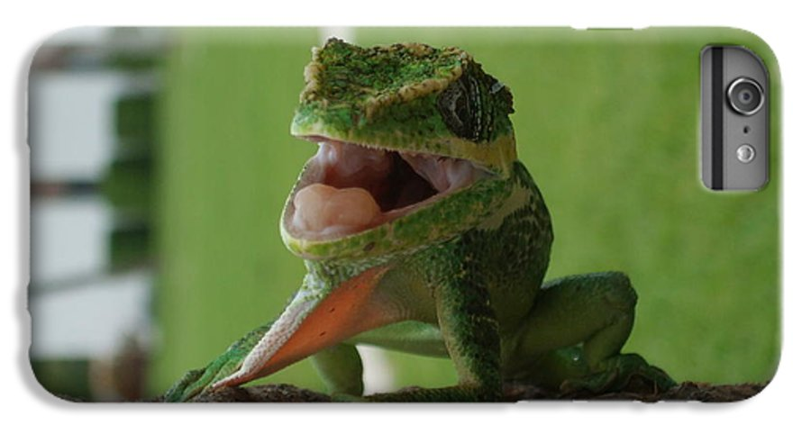 Iguana IPhone 6 Plus Case featuring the photograph Chilling On Wood by Rob Hans