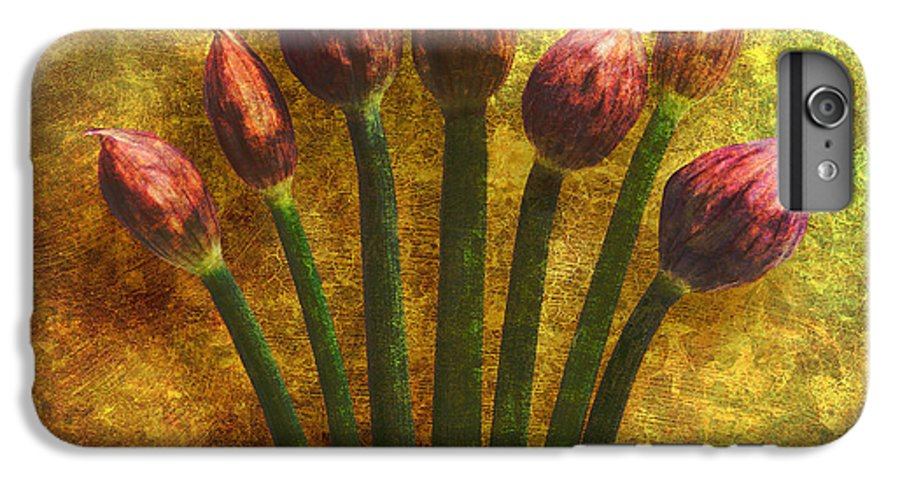 Texture IPhone 6 Plus Case featuring the digital art Chives Buds by Digital Crafts