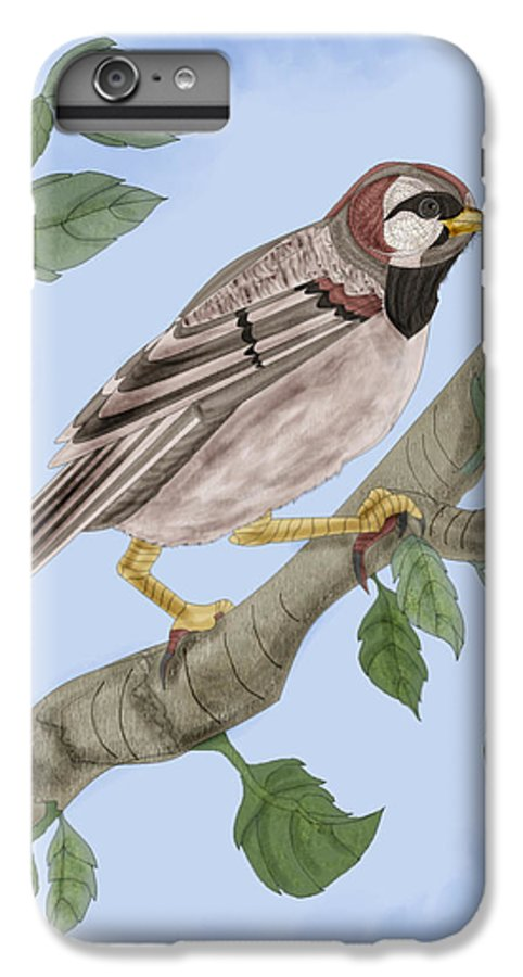 Sparrow IPhone 6 Plus Case featuring the painting Common House Sparrow by Anne Norskog