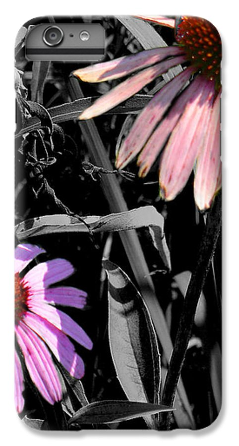 Purple Cone Flower IPhone 6 Plus Case featuring the photograph Cone Flower Tapestry by Steve Karol