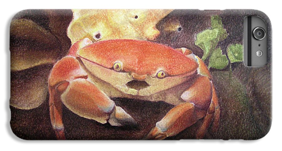 Animals IPhone 6 Plus Case featuring the painting Coral Crab by Adam Johnson