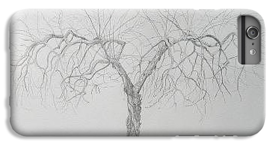 Cortland Apple Tree IPhone 6 Plus Case featuring the drawing Cortland Apple by Leah Tomaino