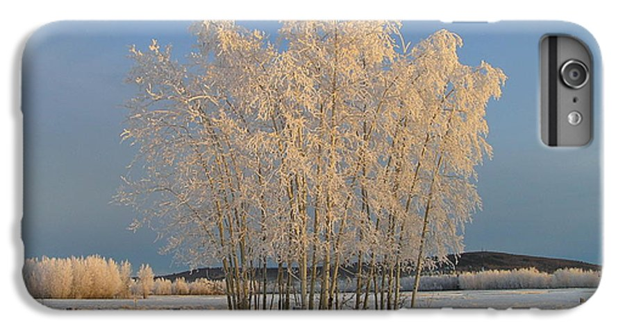 Snow IPhone 6 Plus Case featuring the photograph Creamer Field by Louise Magno