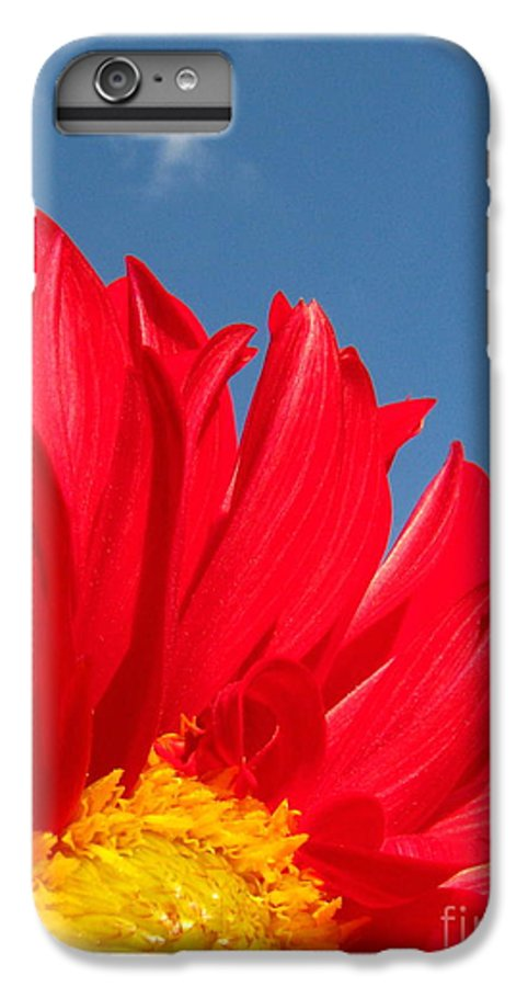 Dahlia IPhone 6 Plus Case featuring the photograph Dahlia by Amanda Barcon