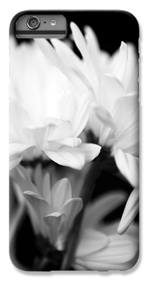 Floral IPhone 6 Plus Case featuring the photograph Daises In Black And White by Ayesha Lakes