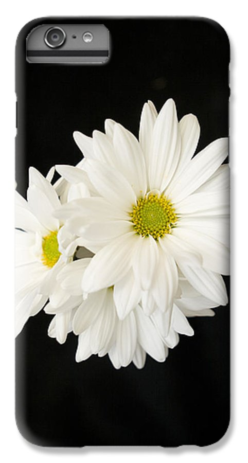 Floral IPhone 6 Plus Case featuring the photograph Daisies by Ayesha Lakes