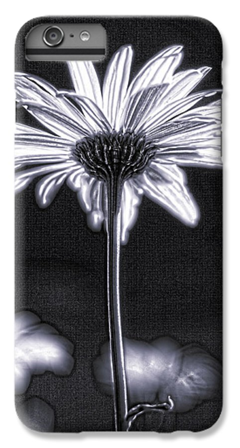 Black & White IPhone 6 Plus Case featuring the photograph Daisy by Tony Cordoza